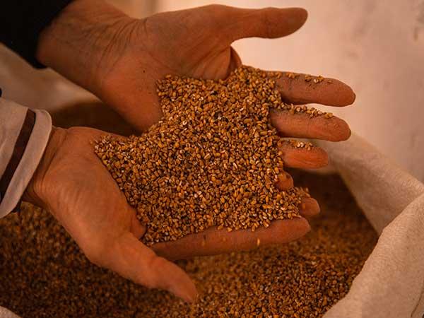 Distributore-farina-bramata-in-confezioni-da-50-kg-modena