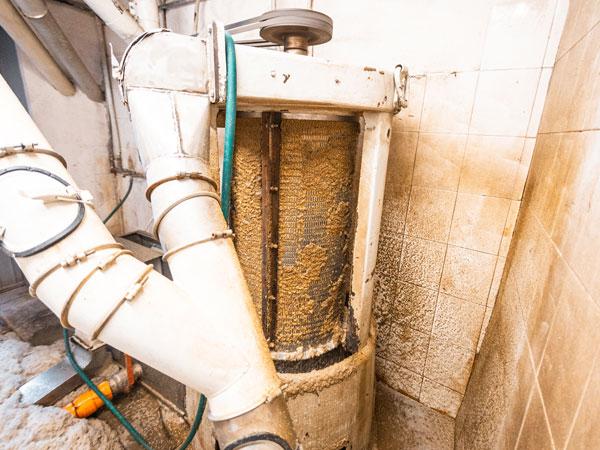 Lavaggio-del-grano-per-eliminazione-impurita-modena
